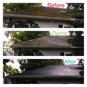 Roof Cleaning Service for Birmingham MI Lake State Cleaning