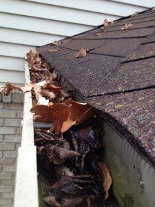 michigan gutter cleaning before e1453700063998