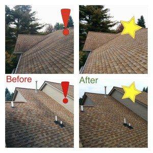 michigan roof clenaing example