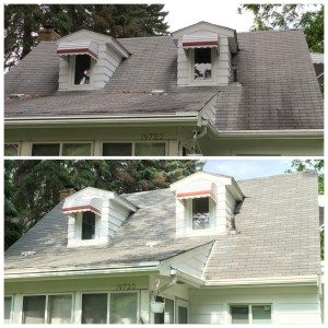 oakland county roofcleaning before after1 e1453701792130