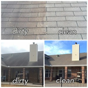 Roof Cleaning in Bloomfield Hills 1