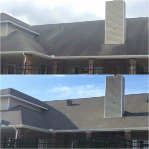 roof clean example 1 birmingham MI