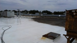 TPO cleaning1
